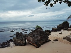 Sea Beach Horizon Over Water Sky Rock - Object Tranquility Nature Sand Water Outdoors No People Day Beauty In Nature Scenics Large Group Of Animals Sea Life Clouds And Sky Blue Rocks And Water Rocks Bali, Indonesia Low Tide Sand & Sea (_donnita_) Tags: sea beach horizonoverwater sky rockobject tranquility nature sand water outdoors nopeople day beautyinnature scenics largegroupofanimals sealife cloudsandsky blue rocksandwater rocks bali indonesia lowtide sandsea