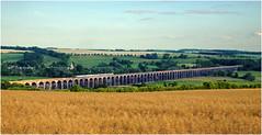 Melton Mowbray Service (Welsh Gold) Tags: east midlands demu meridian units 1m61 st pancras melton mowbray service welland viaduct harringworth rutland