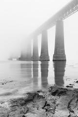 Misty Bridge (MatMat Brown) Tags: forthrailbridge forthbridge mist fog haar cloudy water bridge scotland edinburgh crossing