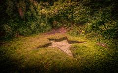 The Garden Of The Star Pond (David Haughton) Tags: secret garden park pond magic magical fineart intimate davidhaughton