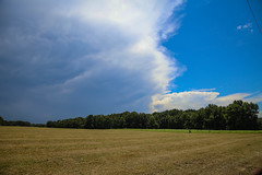 Afternoon thunderstorm - Greenville Co., S.C. (DT's Photo Site - Anderson S.C.) Tags: canon 6d 24105mml lens greenville south carolina upstate hiway25 happy cow creamery thunderstorm clouds approaching storm lightning summer rain hail