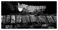 clothes line parade (explored) (BedBrochFlick) Tags: black white bw england uk washing line yorkshire 2017 clothes explored stonewall §ummer