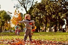 Alegria Otoñal I   Autumn Joy I (Pablo Abrudsky) Tags: 2017 pentaxk3ii fall autumn leaves cold sun warm colors red grass kids child girl bokeh pentax 50mm f14 pentaxfa50mm114