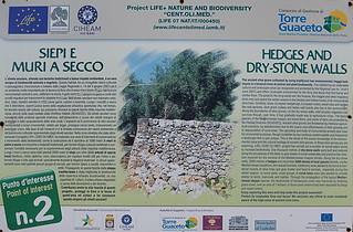 Ancient dry-stone walls info