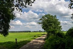 Landscape (Marco van Beek) Tags: landscape holland trees grass sky forest field bushes nature
