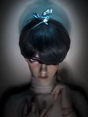 Spirit Animal (tangy_melon) Tags: sd popodoll 68cm bjd hybrid dollstown hue blue eyes resinbtiz magpie leekeworld wig portrait balljointed doll