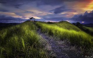 Sosiri Hill