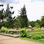 สวนหลวง ร.9 - Suan Luang Rama IX National Park. (King Rama IX Park) Bangkok, Thailand thumbnail
