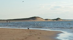evening at Brackley Beach (Kennuth) Tags: beach ocean coast sea sand birds seagulls princeedwardisland dunes canada kennuth unlimitedphotos cans2s