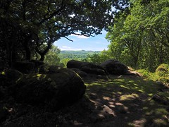 P7020633 (simonrwilkinson) Tags: devon path lustleigh trees lustleighcleave landscape
