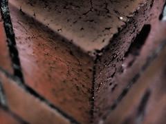 During Intermission (Rantz) Tags: australia australiancapitalterritory brick bricks canberra corner corners dikaiosyne rantz acton au