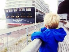 The little one watching the QE. (greenchartreuse) Tags: cruiseterminal rotterdam cunard cruiseship ship