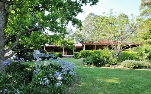 249 North Island Loop Road, Upper Orara NSW 2450