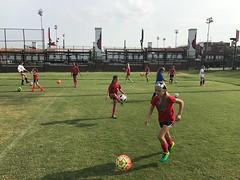 IMG_9805.JPG (lynnstadium) Tags: uofl louisville soccer girls success win winners ball goal teaching learning camp cardinal spirit l1c4 lynn stadium