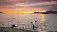 Sunset at Kitsilano Beach (joseph.wang.jl) Tags: kitslano beach woman dog nikon 35mm 18g sunset wave