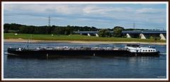 TMS JUTTER (rasafo66) Tags: rheinschiff binnenschiff frachtschiff generalcargoship frightship rhein duisburg rhine sonyalpha tamron1750