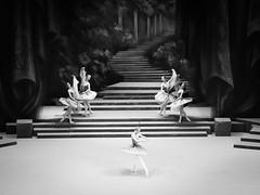 (赤いミルク) Tags: blackandwhite monochrome ビンテージ ビニル black romantism gothic コントラスト 赤 red ウォール wall ゴースト 悪魔 ghost 友人 ドア doors 贈り物 地平線 horizon モノクローム 暗い street 壁 surreal intriguing 生活 life door texture 秋 雨 overpast 賞賛 光 影 白黒 幽霊 いかだ ダンス stage