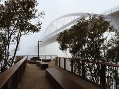 Brisbane River Fog 2 (stephenk1977) Tags: australia queensland qld brisbane fog mist morning 2017 river southbank iphone vsco goodwillbridge