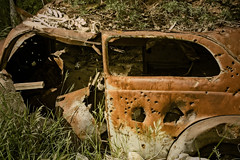 CHEVY SHOOTOUT (akahawkeyefan) Tags: bones car relic wreck bullet holes davemeyer garnet montana rust