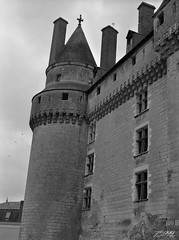 Castle Tower (fs999) Tags: fs999 fschneider aficionados zinzins pentax 645 645n pentaxist pentaxian justpentax 6x45 film camera filmcamera 60x45 ashotadayorso topqualityimage topqualityimageonly artcafe pentaxart corel paintshoppro paintshopprox9ultimate x9ultimate rollei rpx 400 rpx400 rolleirpx400 400iso blackwhite blackandwhite bw noirblanc noiretblanc nb blackwhitephotos caffenol cl cold stand home development epson perfection v500 scanner 3200dpi betterscanning touraine france langeais pentaxfa64545mmf28ed fa45 45mm