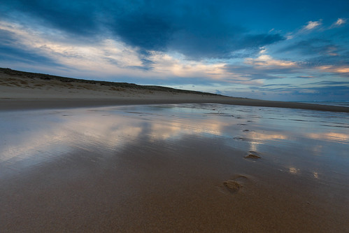 Reflections in wet sand