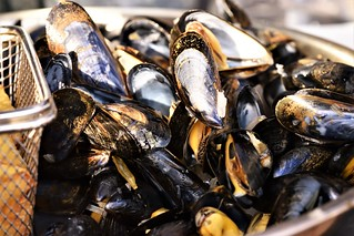 Moules frites - French fries and molds