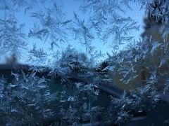 Cold Morning (artofjonacuna) Tags: ice snowflakes macro cold snow crystal frozen