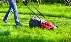Lawn Mowing Services darwin (mklawnsandall) Tags: gardenmaintenance landscaping rubbish removal tree fencing