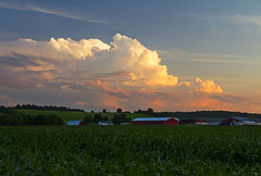 Thunderstruck (Matt Champlin) Tags: storm thunder thunderstorm crazy barn farm rural nature landscape peaceful clouds adventure canon 2017 cny skaneateles