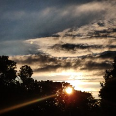 IMG_20170717_065034_210 (krissos.photography) Tags: sunrise minneapolis minnesota lyndale park sun sky horizon bluesky nature photography year2017 seasonsummer monthjuly photographybykrisso lightandshadow tree trees naturephotography minneapolisminnesota lyndalepark