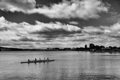 Hollingworth Lake 80658 (Ellisroger) Tags: rowing boats boat rowingboat hollingworthlake littleborough
