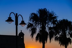 atardecer en la caleta de Cádiz (inma F) Tags: cadiz paisaje verano azul tarde atardecer caleta palmera silueta evening sunset palms silhouette andalucia horaazul