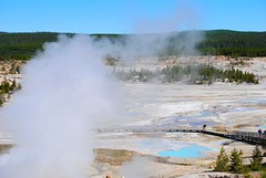 Norris Geyser Basin (ekelly80) Tags: wyoming yellowstone yellowstonenationalpark nationalparkservice nps june2017 roadtrip keisgoesusa optoutside findyourpark norrisgeyserbasin geyser thermal geothermal hotsprings pools view scenery steam smoke boardwalk below lookdown colors water