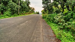 The Road  #Road #Sky #Cloud #Street #Trees #Plants #Pole #Green #NatureLover #Nature #Breeze #RainyWeather #MyShot #Flicker #Likes #Comments #PleaseComment #Favorite #MotoCam #MotoG3 #Love #😘😘😘 (rockani451) Tags: nature flicker trees love pleasecomment breeze plants road green motog3 cloud rainyweather naturelover pole comments favorite motocam street myshot likes sky