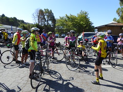 P1020181 (mjstein) Tags: cyclists gpc grizzlypeakcyclists