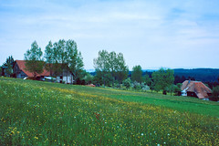 The Black Forest In The Spring Of 1983 (Richard Melton) Tags: landscape farm germany spring flowers ektachrome