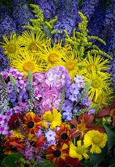 Fruits and flowers (Keartona) Tags: colourful abstract colours flowers floral fruit fruits fruity multicoloured overhead summer summery july garden bright vivid bold colour outdoors vibrant