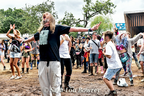 Crowds for The Meow Meows at Nozstock 2017