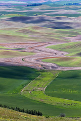 The Curves of The Palouse (cheryl strahl) Tags: washington washingtonstate palouse thepalouse spattern butte steptoebutte colfax clearing creek