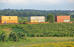 Q008 in the Vineyards (craigsanders429) Tags: csxtrains csx csxeriewestsubdivision stacktrains csxstacktrains northeastpennsylvania vineyards
