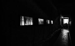 ...exposure... (sermatimati) Tags: genazzano roma lazio fotografia mostra esposizione contesto cantinasociale decay luce ombra allestimento giordano alessandra fotografie soggetti progetto maestro appio sognare sogno magia fantasia photography fantasy magic dreaming invent discovering play beer young music presentation joy
