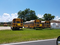 Liberty District Schools (abear320) Tags: school bus liberty district schools thomas saftliner c2 blue bird bristol florida