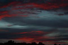 Sunset 7 29 2017 #11 (Az Skies Photography) Tags: sun set sunset dusk twilight nightfall sky skyline skyscape skycandy cloud clouds rio rico arizona az riorico rioricoaz arizonasky arizonaskyline arizonaskyscape arizonaskycandy arizonasunset red orange black salmon canon eos 80d canoneos80d eos80d july 29 2017 july292017 72917 7292017