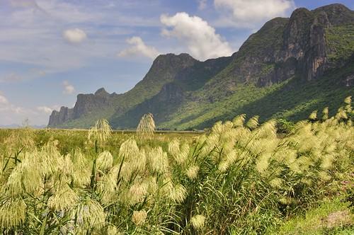parc national sam roi yot - thailande 55