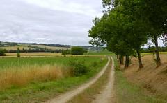 """Les collines gersoises """"Gers - France"""" (josianelavielle) Tags: collines champs chemin arbres ciel nuages"""