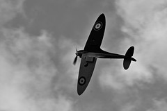 Soaring (Steve.T.) Tags: blackandwhite bnw flyinglegends duxford iwmduxford monochrome flying spitfire supermarinespitfire mk1spitfire airdisplay classicaircraft iconicaircraft worldwartwofighter fighteraircraft nikon d7200 aerobatics aeroplane aircraft miltaryaviation aviationphotography