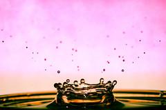 Splash of colour (alexsissons) Tags: drops drop colour beautiful amateur water splash dropping colours