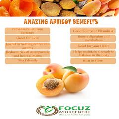 Apricot copy (Focuz AyurCentre) Tags: apricot beautytips benefits health focuzayurcentre amazing diet