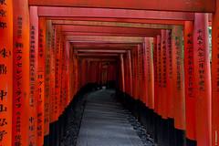 Fushimi Inari Shrine - Kyoto (Chaiyapat_H) Tags: japan kyoto nature landscape red gates fushimi inari shrine