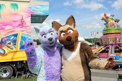 Just me and my big big big #love 😽💙💜 Codydawg Entertainment at the #Kitefestival in Kamen Heeren , Segelfluggelände :3 #FursuitFriday (Keenora Fluffball) Tags: keenora fursuit furry kee